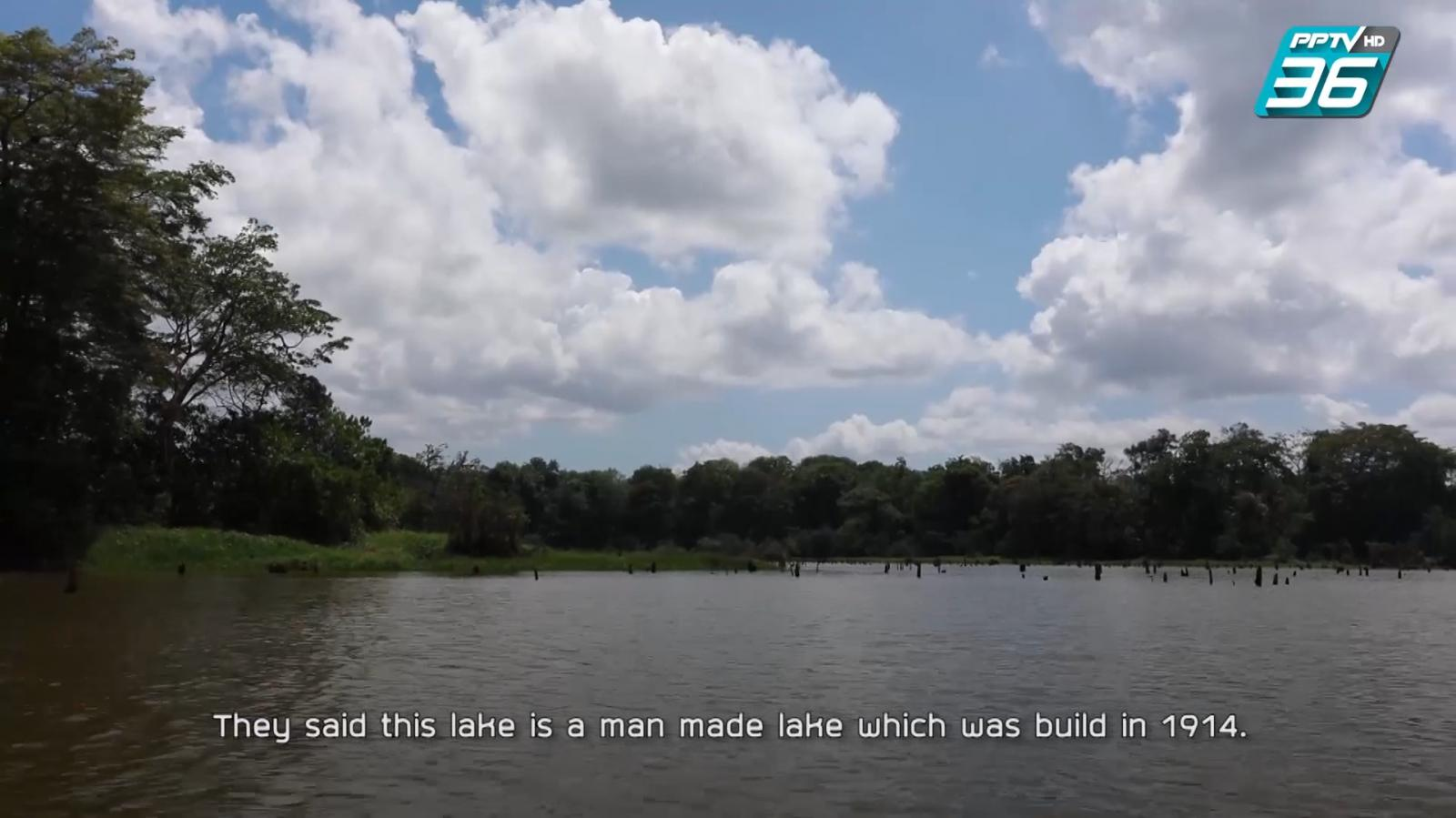 ล่องทะเลสาบกาตูน สัมผัสชีวิตสลอธ สัตว์หายาก ที่ปานามา