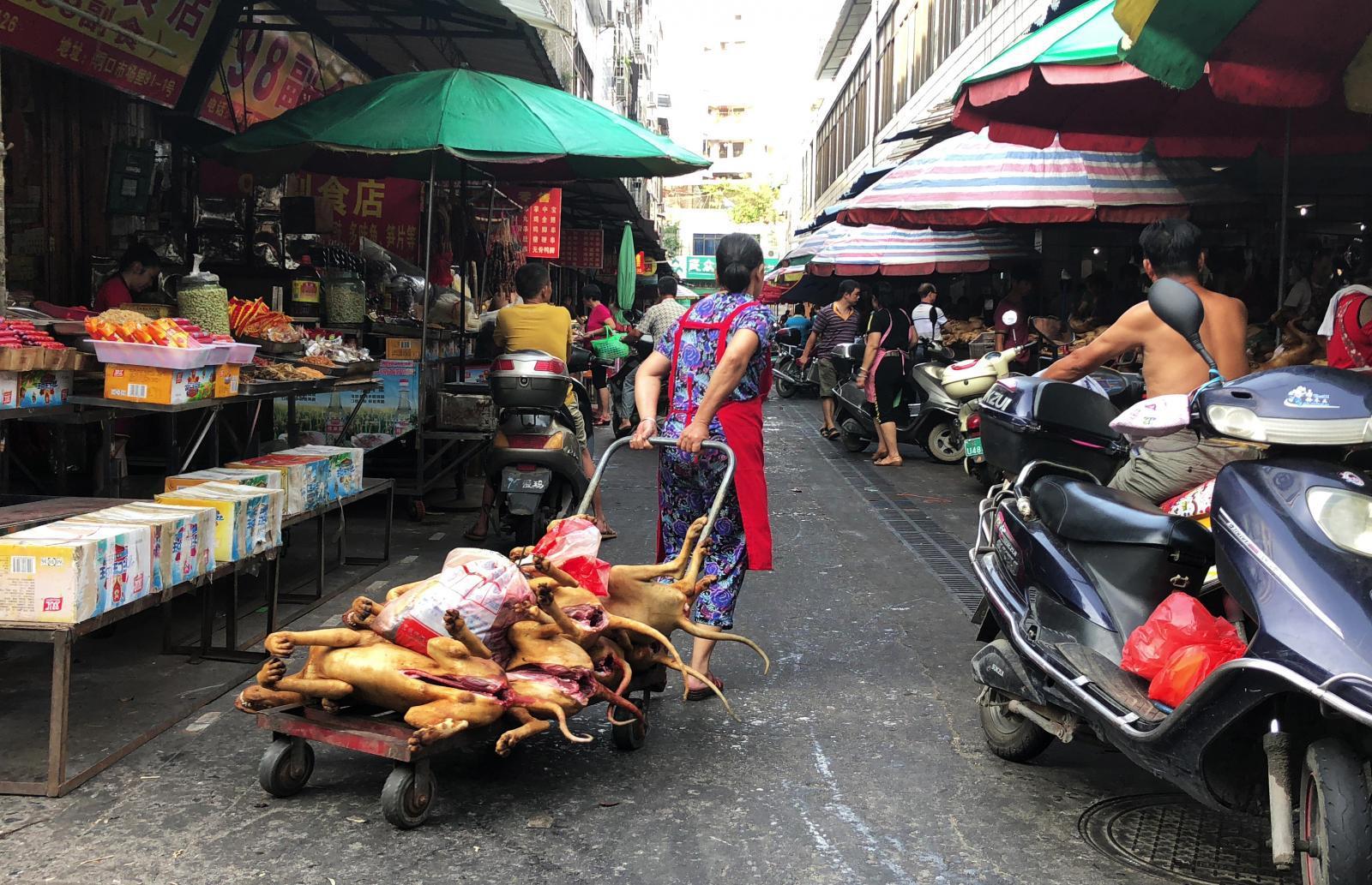 เมืองยูหลินในจีนยังคงจัดเทศกาลกินเนื้อสุนัข ไม่สน โควิด-19