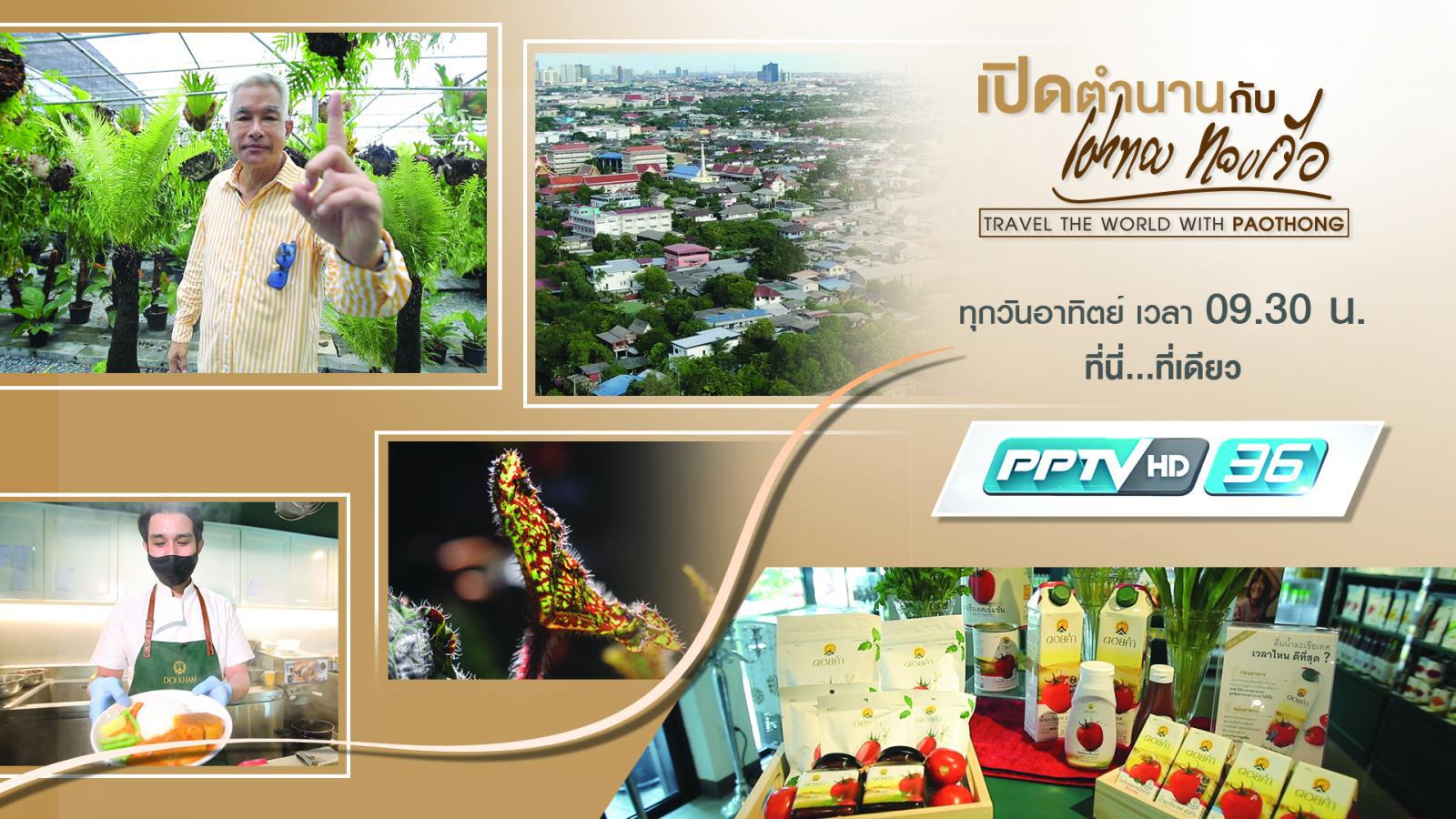 ดอยคำ และ ธรรมชาติ ประเทศไทย