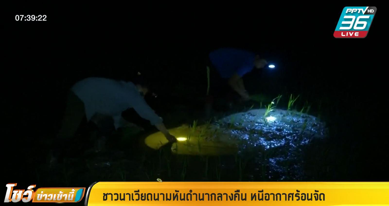 ชาวนาเวียดนาม หันดำนากลางคืน หนีอากาศร้อนจัด