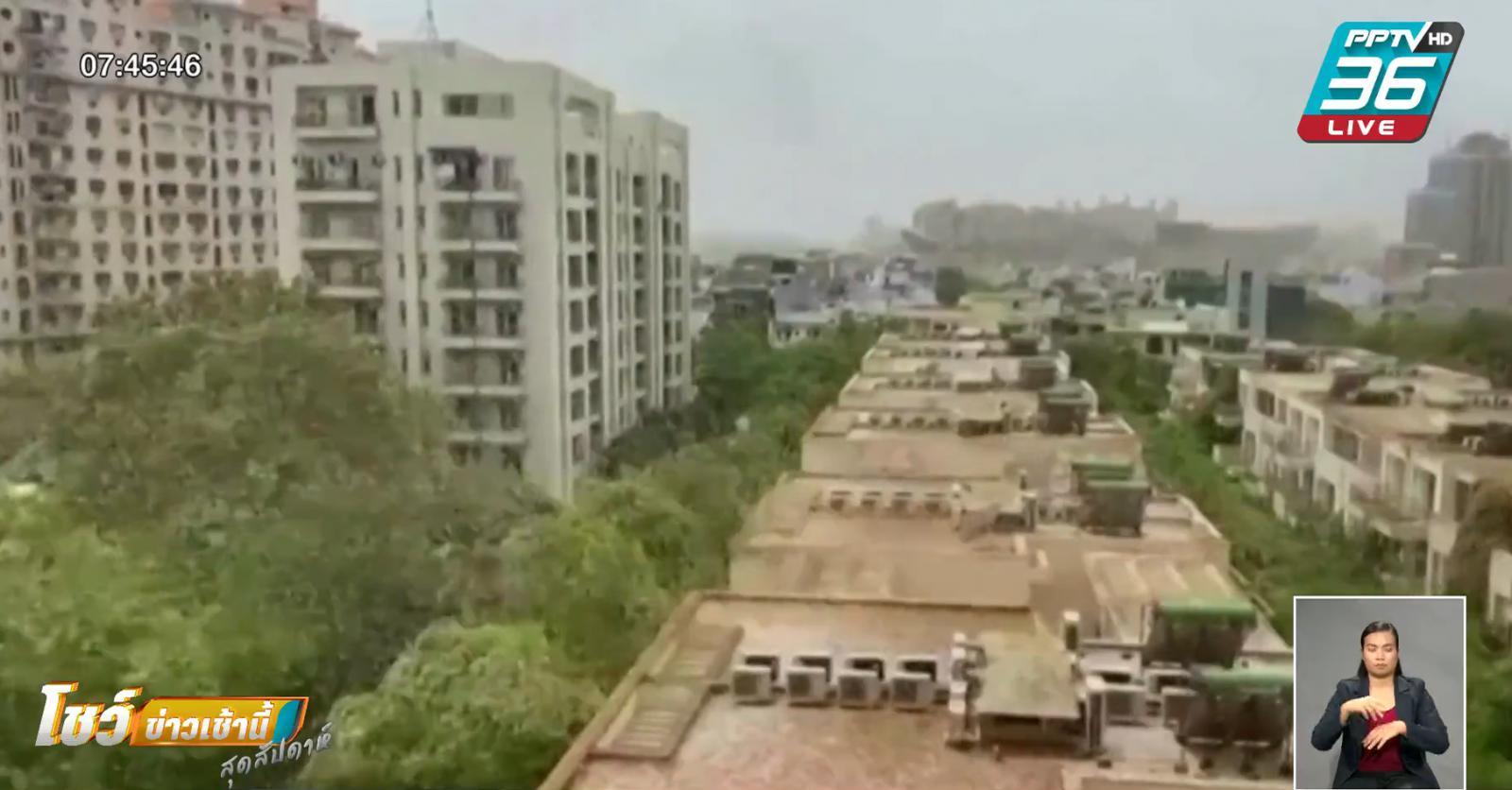 ฝูงตั๊กแตนทะเลทราย บุกใกล้เมืองหลวงอินเดีย