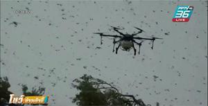 หน่วยควบคุมตั๊กแตนฯ ใช้โดรนจัดการ ฝูงตั๊กแตนทะเลทรายหลายล้านตัว