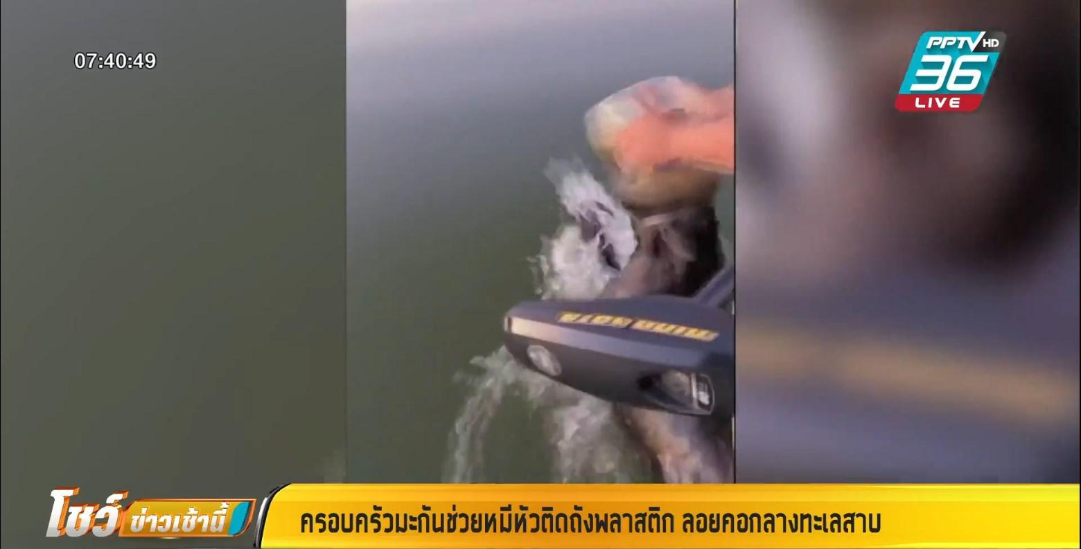 ช่วยหมีหัวติดถัง ลอยคออยู่กลางทะเลสาบ