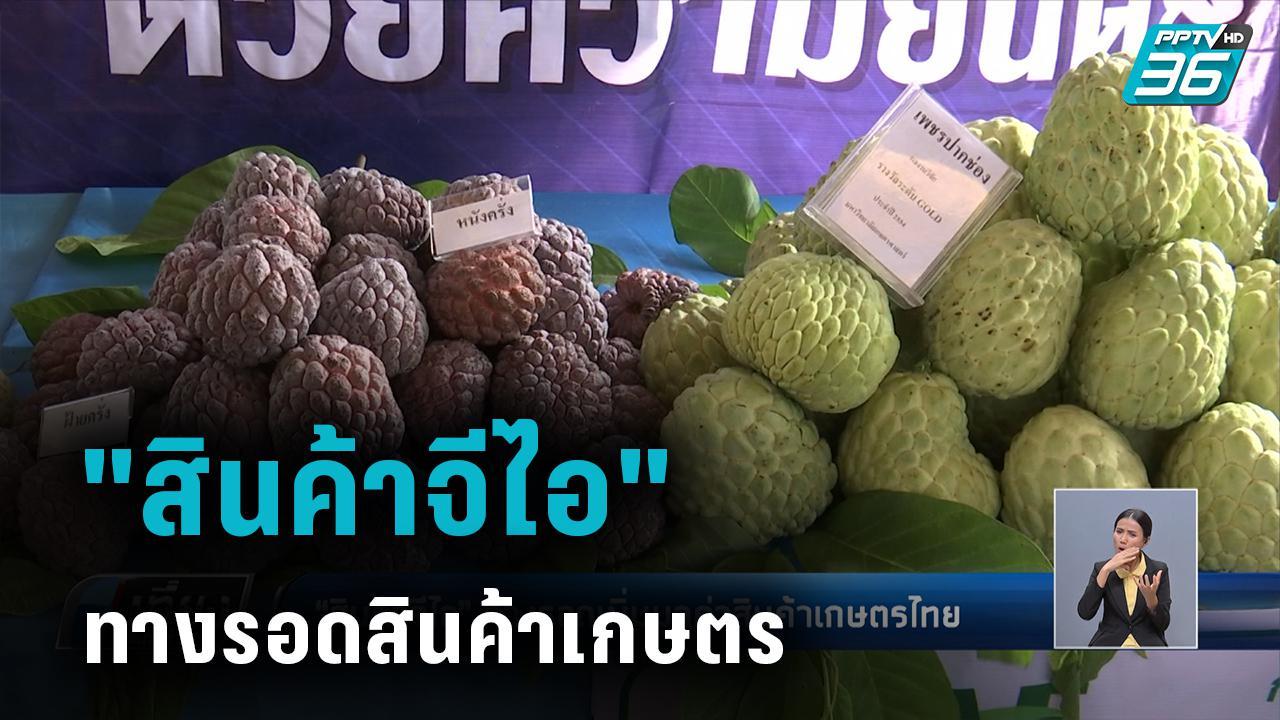 """""""สินค้าจีไอ"""" ทางรอดเพิ่มมูลค่าสินค้าเกษตรไทย"""