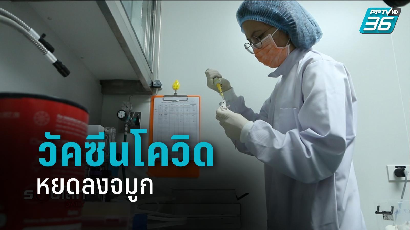 ไบโอเทค พัฒนาวัคซีนโควิด-19 หยอดลงจมูก แฝงไปกับวัคซีนไข้หวัดใหญ่