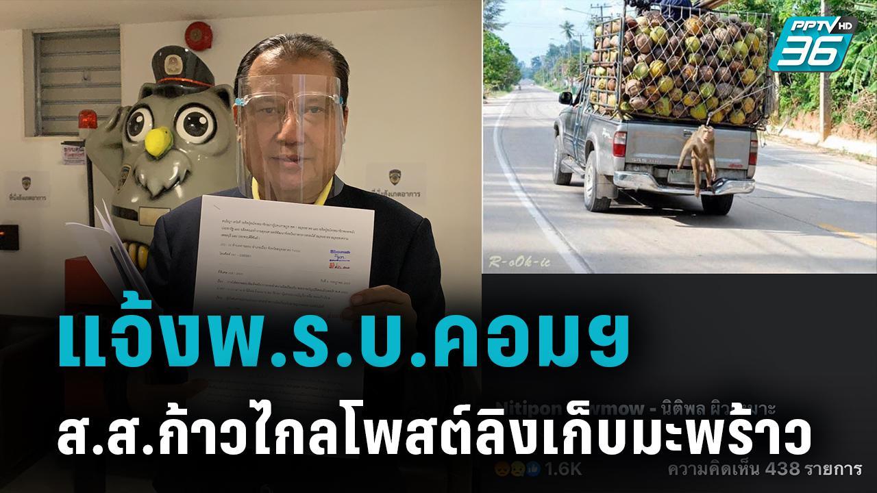 'สนธิญา' ร้องปอท.เอาผิด ส.ส.ก้าวไกล โพสต์ลิงที่อินโดฯขยี้ปมแบนมะพร้าวไทย