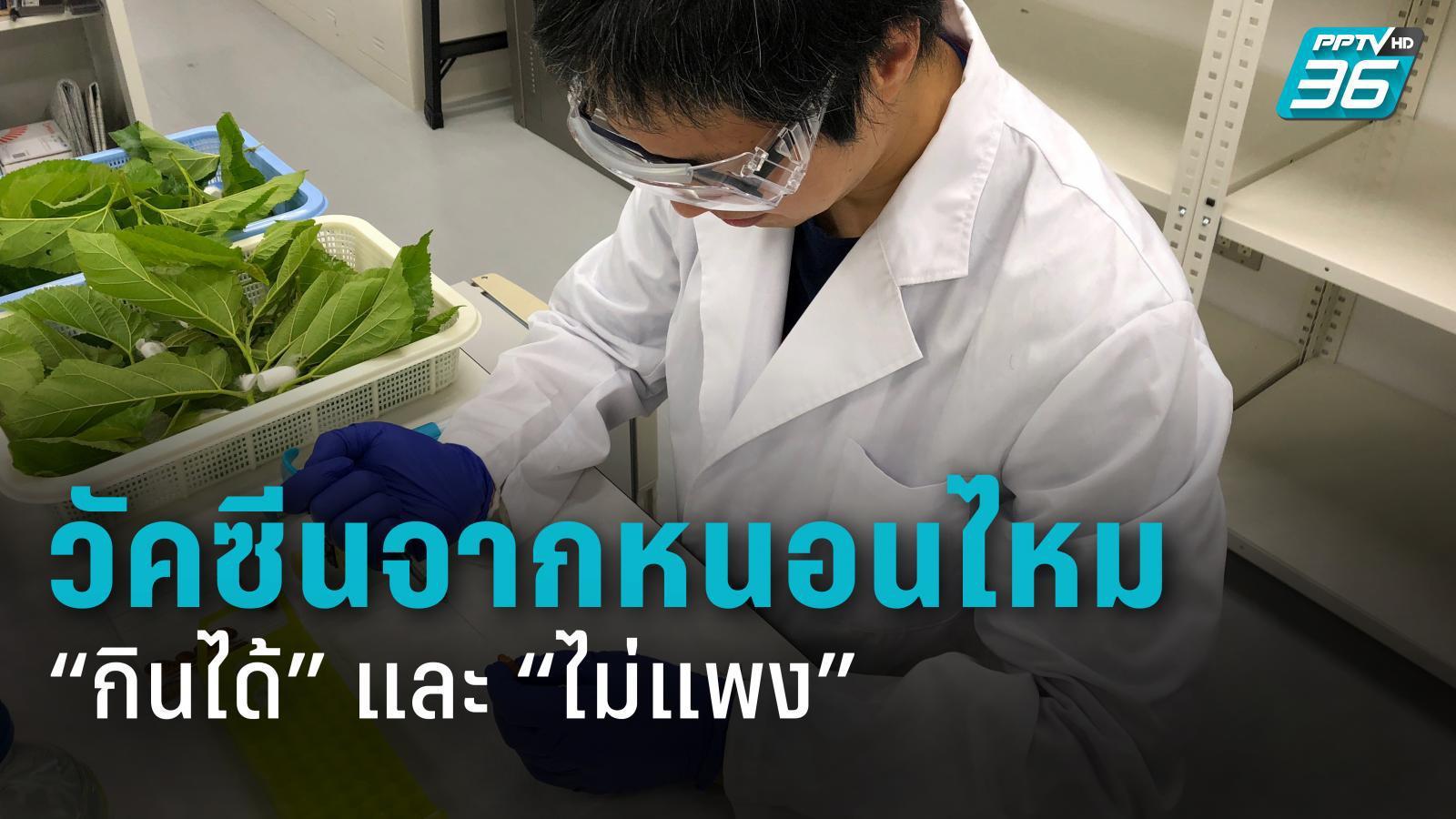 มหาวิทยาลัยญี่ปุ่น เริ่มสร้างวัคซีนโควิด-19 จากโปรตีนหนอนไหม