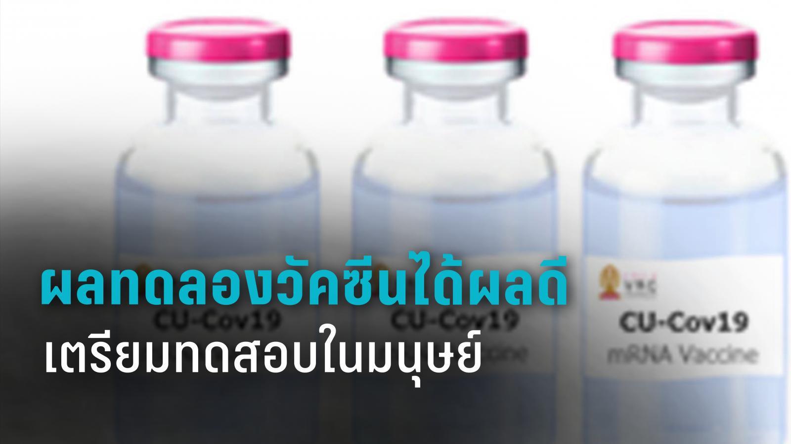 จุฬาฯ เผยผลทดลองวัคซีน โควิด-19 ในลิงมีภูมิคุ้มกันเพิ่ม รอไฟเขียวทดสอบในมนุษย์