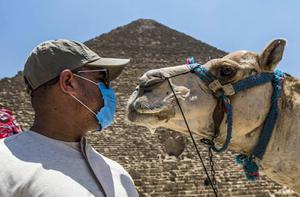 """""""อียิปต์"""" ติดเชื้อโควิด-19 กว่า 8 หมื่นราย ตายหลายพันคน"""