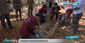 กรมอุทยานฯ เดินหน้าตรวจเสือทั่วประเทศ