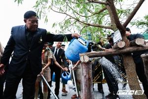 ซ่อมต้นมะขามสนามหลวง ปลูกทดแทน 37 ต้น