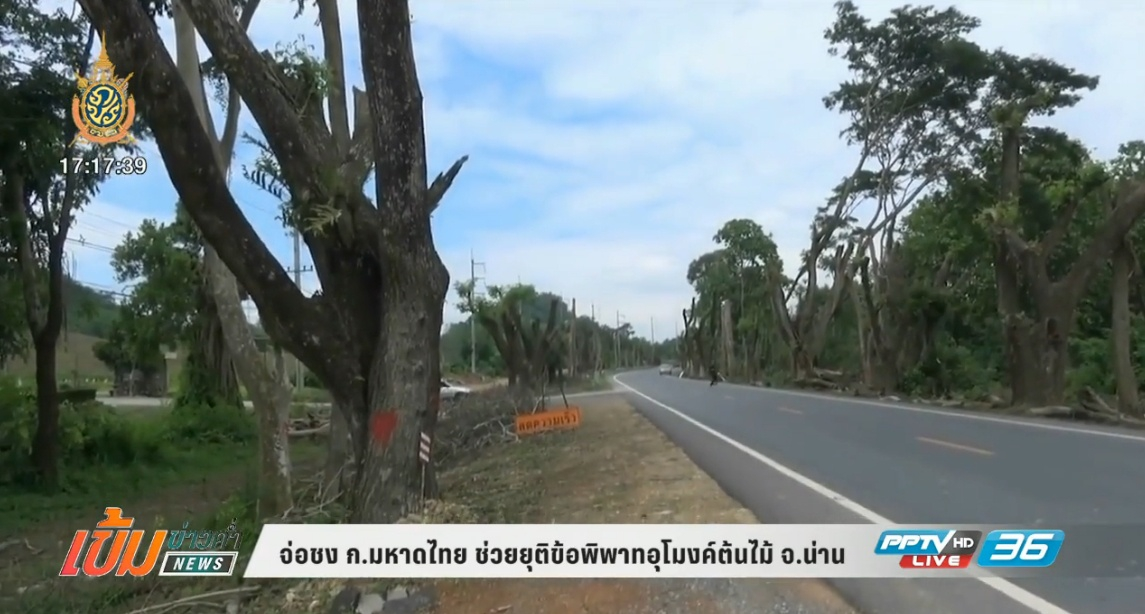 ชงก.มหาดไทย ช่วยยุติข้อพิพาทอุโมงค์ต้นไม้ จ.น่าน