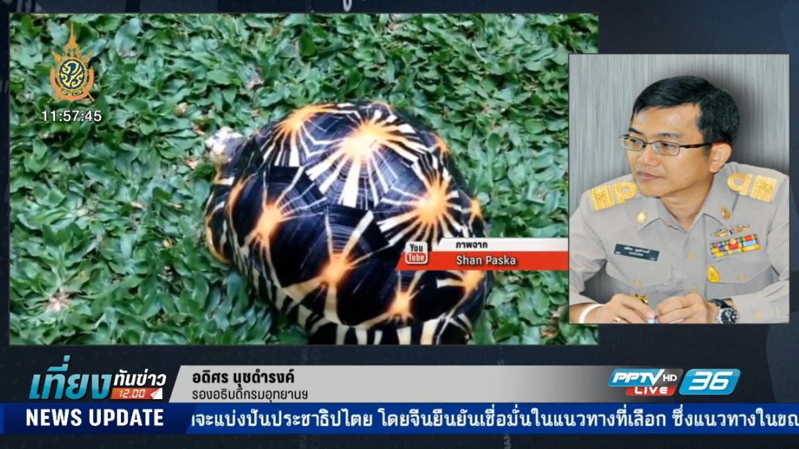 คืบหน้า เหตุเต่าพันธุ์หายากหายจากสถานีเพาะเลี้ยงนกน้ำบางพระ จ.ชลบุรี (คลิป)