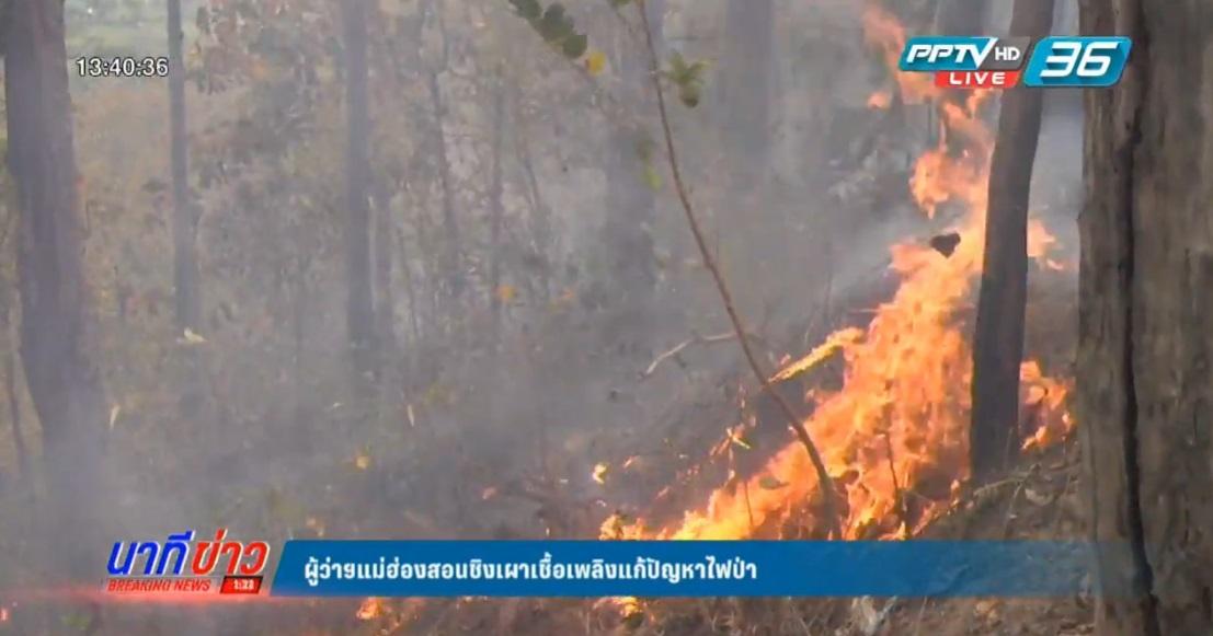 ผู้ว่าฯแม่ฮ่องสอนชิงเผาเชื้อเพลิงแก้ปัญหาไฟป่า