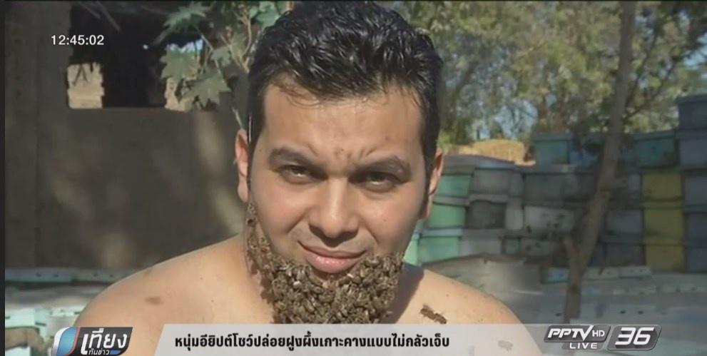 หนุ่มอียิปต์โชว์ปล่อยฝูงผึ้งเกาะคางแบบไม่กลัวเจ็บ (คลิป)