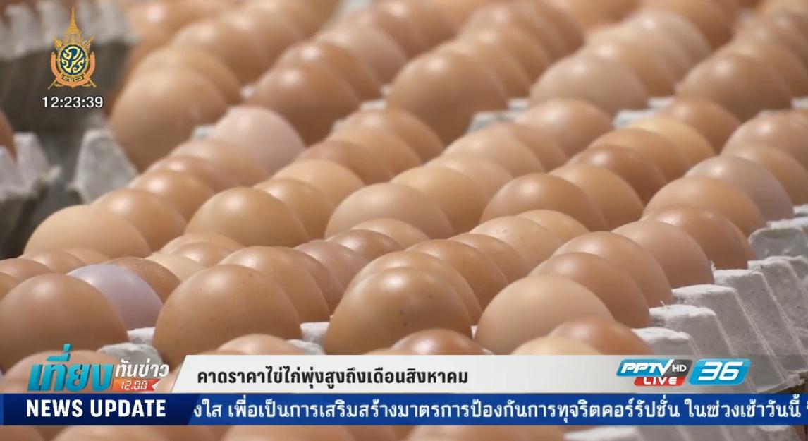 คาดราคาไข่ไก่พุ่งสูงถึงเดือนสิงหาคม (คลิป)