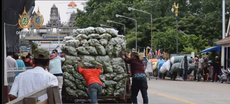 ชาวกัมพูชาแห่ซื้อมะม่วงไทยวันละ 150 ตัน