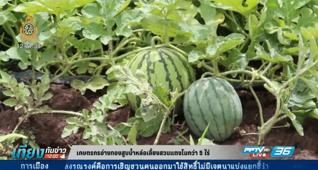เกษตรกรอ่างทอง สูบน้ำหล่อเลี้ยงสวนแตงโมกว่า 5 ไร่