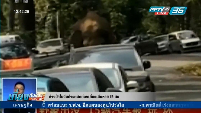 ช้างป่าในจีนทำรถนักท่องเที่ยวเสียหาย 15 คัน