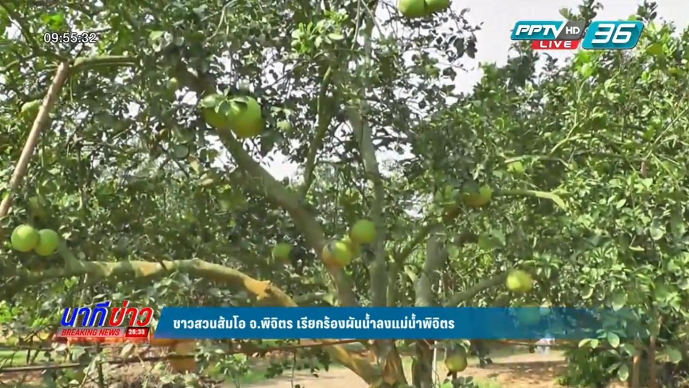 ชาวสวนส้มโอ จ.พิจิตร เรียกร้องผันน้ำลงแม่น้ำพิจิตรแก้ภัยแล้ง