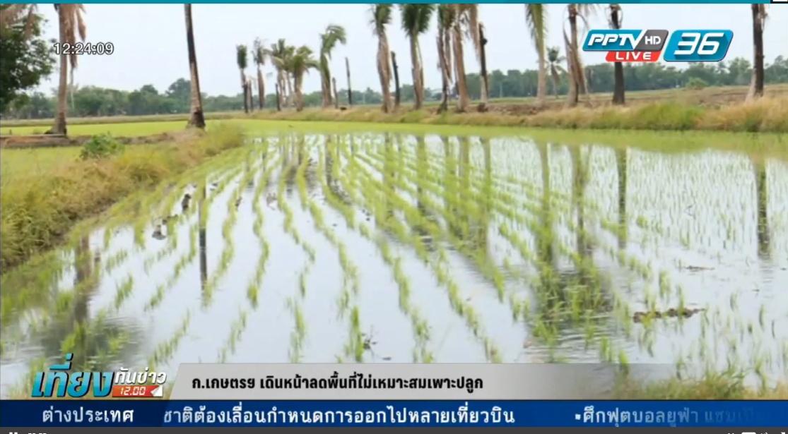 ก.เกษตรฯ เดินหน้าลดพื้นที่ไม่เหมาะสมเพาะปลูก