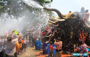 """สงกรานต์ทั้งที.. """"ช้างไทย"""" ก็ไม่พลาด ร่วมสาดน้ำสร้างสีสัน"""
