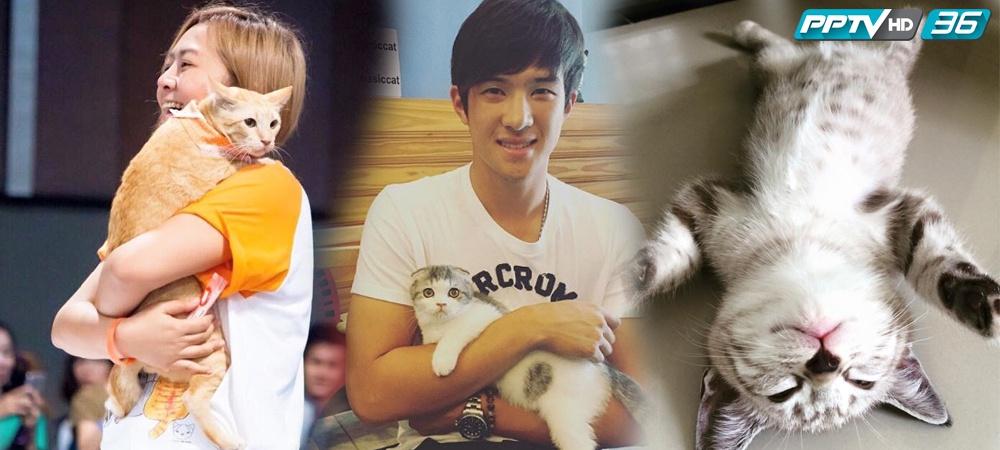 """ทาสแมวรู้ยัง 4 มิ.ย. วันกอดแมวสากล """"Hug Your Cat Day"""""""