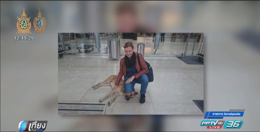 แอร์โฮสเตสสาวเยอรมันรับอุปการะสุนัขจรจัดจอมตื๊อ (คลิป)
