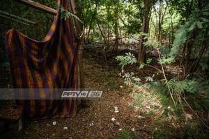 แหล่งมั่วสุมทางเพศริมถนนพระราม 9 รุกที่ป่าเอกชน
