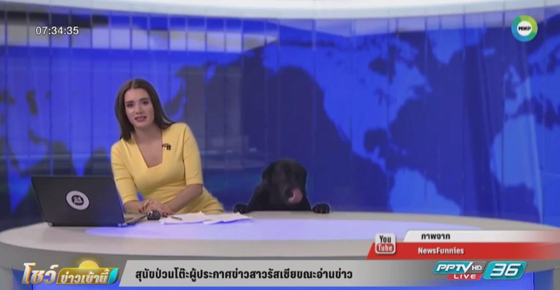 สุนัขป่วนโต๊ะผู้ประกาศข่าวสาวรัสเซียขณะอ่านข่าว