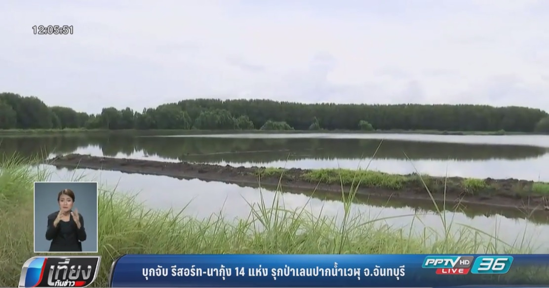 บุกจับ รีสอร์ท-นากุ้ง 14 แห่ง รุกป่าเลนปากน้ำเวฬุ จ.จันทบุรี