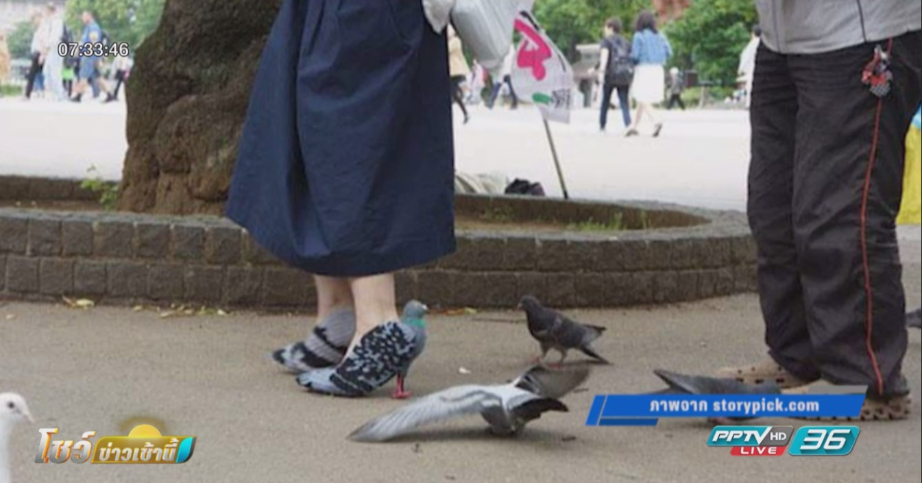 ดีไซน์เนอร์ญี่ปุ่นสุดล้ำทำรองเท้านกพิราบแก้ปัญหานกกลัวคน