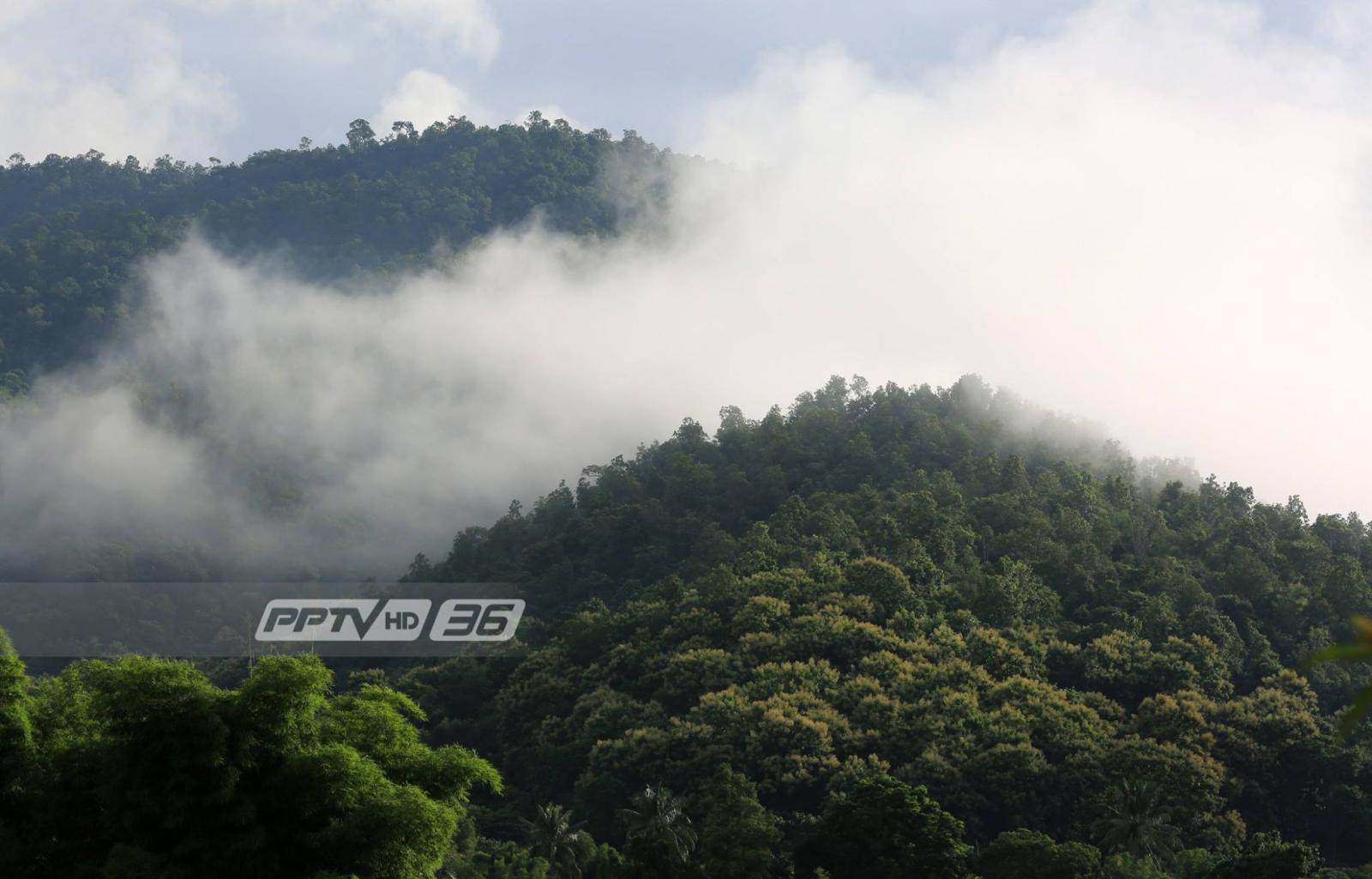 อุตุฯ เตือนภาคใต้ฝนตกหนัก – ประเทศไทยตอนบนอุณหภูมิลด 2-4 องศา