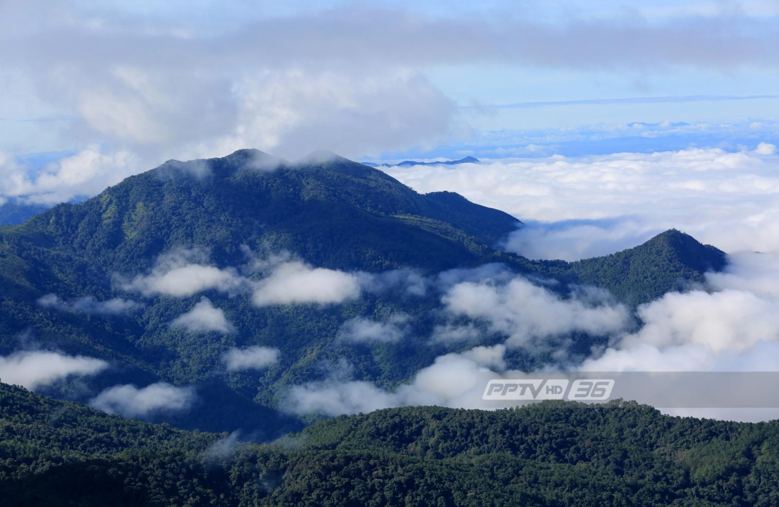 อุตุฯ เผยเกือบทั่วประเทศอุณหภูมิลดลง 6- 8 องศา บางพื้นที่อาจมีฝนตก