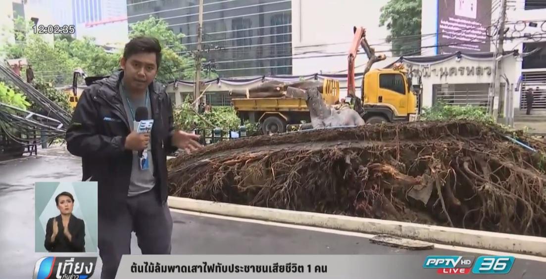 ต้นไม้ล้มพาดเสาสายสื่อสารล้มทับประชาชนเสียชีวิต 1 คน