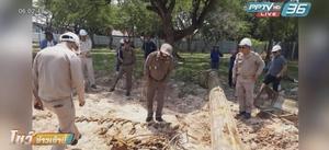 คนงานขุดพบปืนเกือบ 20 กระบอก ฝังดินกลางในสวนสมเด็จฯ จ.ร้อยเอ็ด