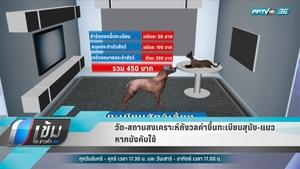 วัด-สถานสงเคราะห์ กังวลค่าขึ้นทะเบียนสุนัข-แมว หากบังคับใช้ใครจ่าย