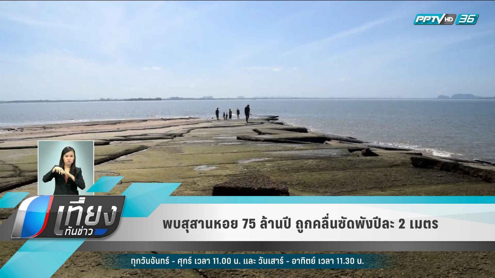 พบสุสานหอย 75 ล้านปี ถูกคลื่นซัดพังปีละ 2 เมตร