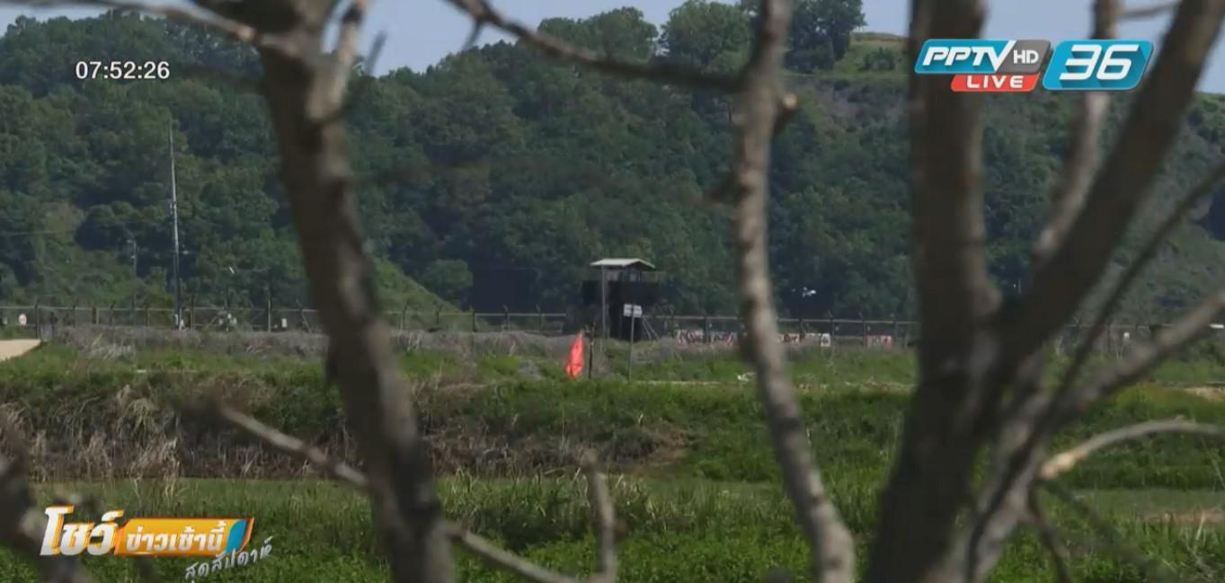 """""""เจรจาสันติภาพ""""สองเกาหลี ดันราคาที่ดินเขตปลอดทหารพุ่ง"""