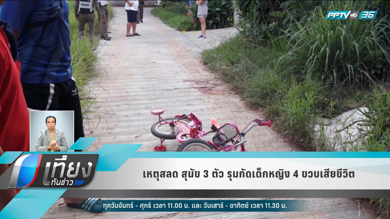 สลด! สุนัขเพื่อนบ้าน 3 ตัว รุมกัดเด็กหญิง 4 ขวบ เสียชีวิตก่อนถึง รพ.
