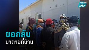 ขอกลับมาตายที่บ้าน แรงงานไทยที่อุซเบกิสถานวอนรัฐช่วยเหลือ