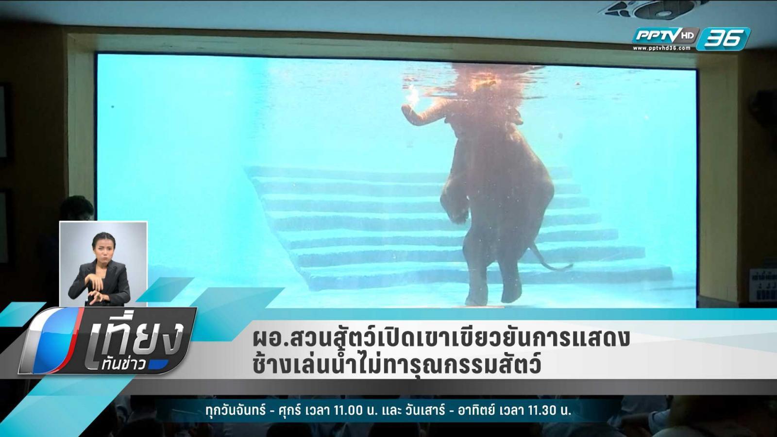 ผอ.สวนสัตว์เปิดเขาเขียวยันการแสดงช้างเล่นน้ำไม่ทารุณกรรมสัตว์