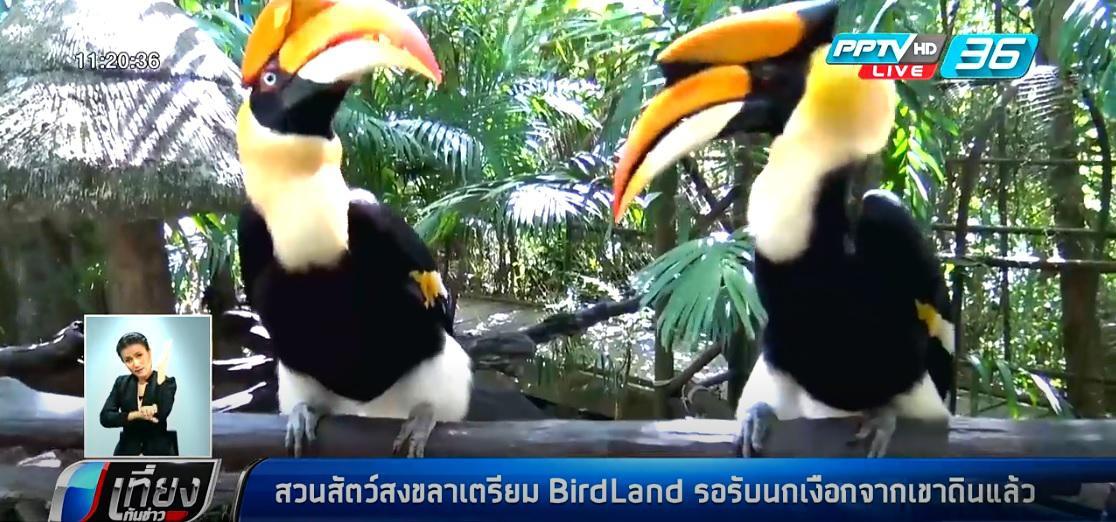 สวนสัตว์สงขลาเตรียม BirdLand  รอรับนกเงือกจากเขาดินแล้ว