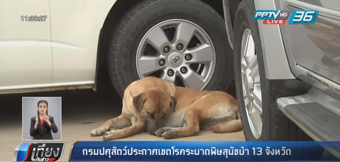 กรมปศุสัตว์ประกาศเขตโรคระบาดพิษสุนัขบ้า 13 จังหวัด