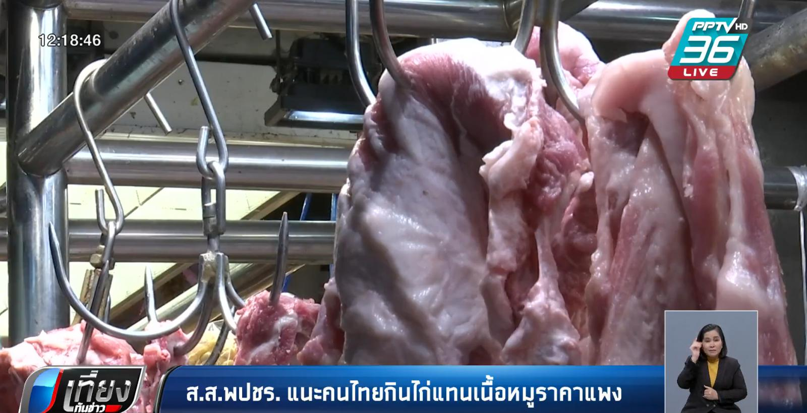ราคาหมูแพง! ส.ส.พลังประชารัฐ แนะ กินเนื้อไก่แทนหมู