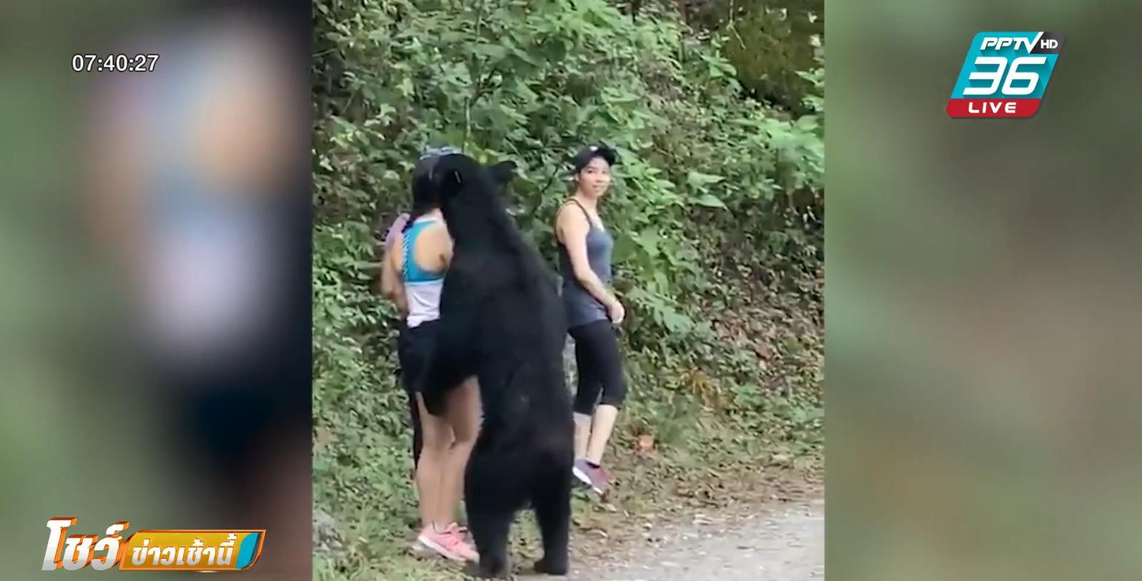 สาวน้อยเม็กซิกัน ใจกล้าเซลฟีกับหมีกลางป่า