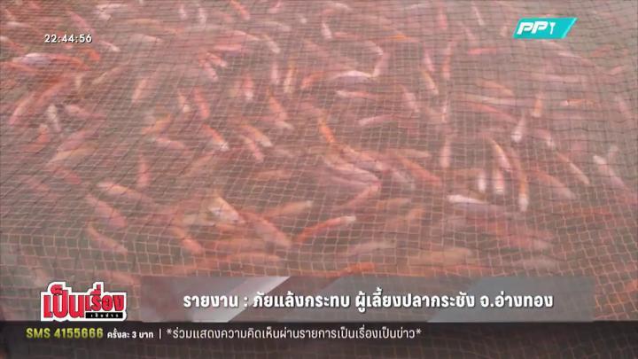 ภัยแล้งกระทบผู้เลี้ยงปลากระชัง จ.อ่างทอง