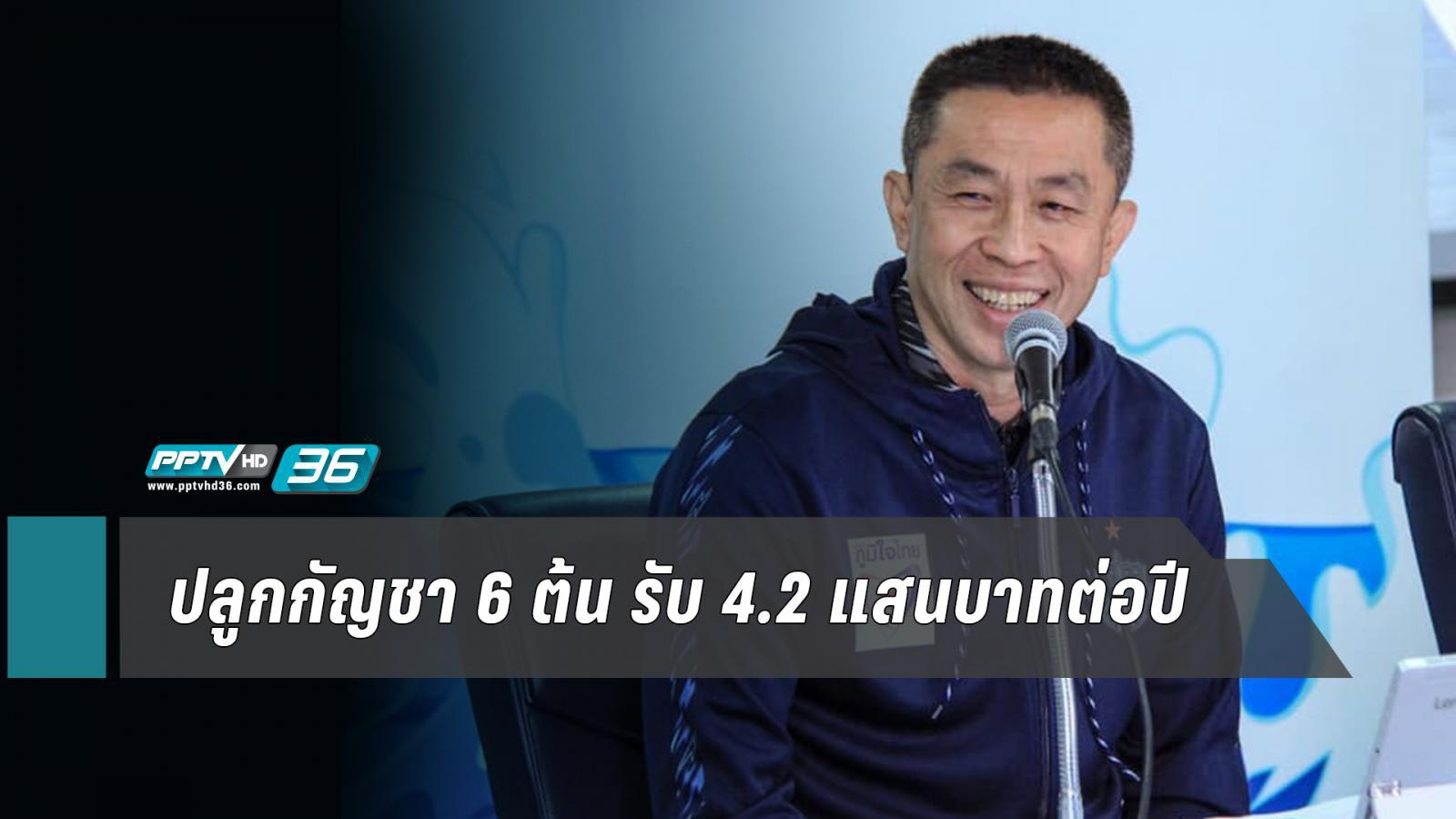 """""""ภูมิใจไทย"""" ชู ปลูกกัญชา 6 ต้น รับ 4.2 แสนบาทต่อปี"""