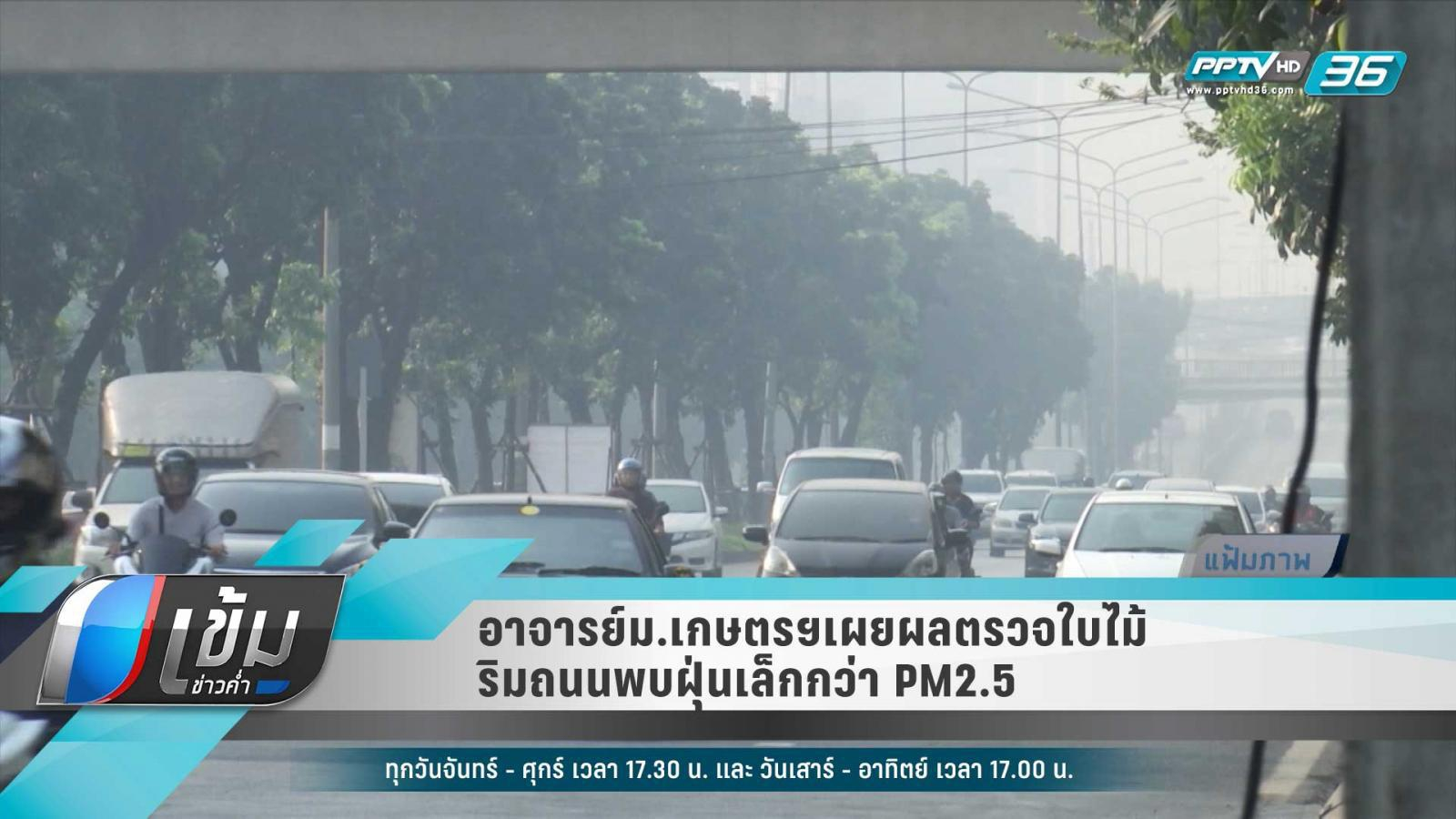 อาจารย์ม.เกษตรฯเผยผลตรวจใบไม้ริมถนนพบฝุ่นเล็กกว่า PM2.5
