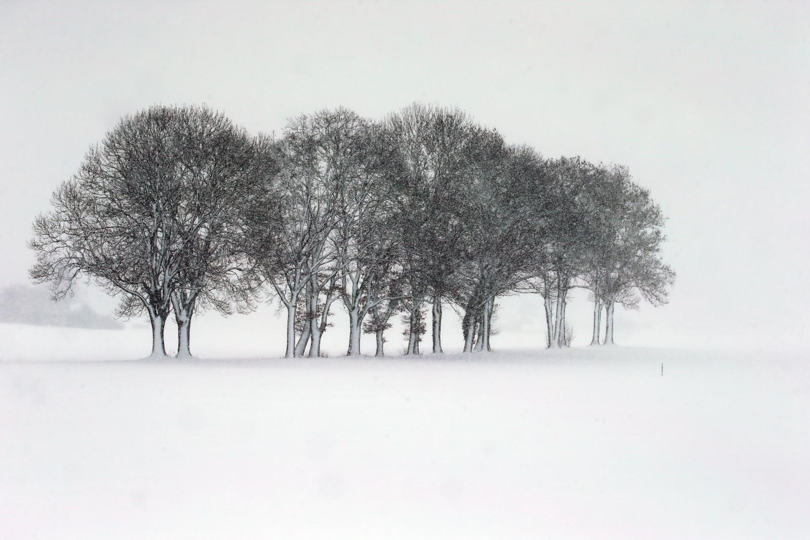 หิมะตกหนักในเยอรมนี ยกเลิกนับร้อยเที่ยวบิน
